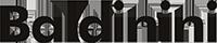 Логотип BALDININI