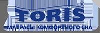 Логотип ТОРИС